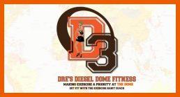 Copy of D3 Logo